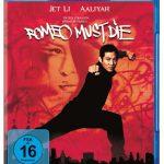 Romeo Must Die (2000) BRRip 420p 325MB Dual Audio