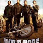 Wild Hogs (2007) BRRip 420p 300MB Dual Audio