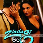 Zindagi 50 50 (2013) Hindi Movie 300MB DVDScr