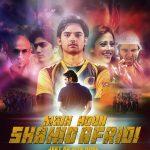 Main Hoon Shahid Afridi (2013) 400MB DVDScr