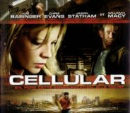 Cellular 2004