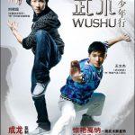Wushu 2008 Hindi Dubbed Movie Watch Online free