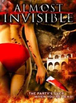 Almost Invisible (2010)