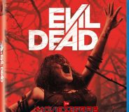 Evil Dead (2013) Dual Audio