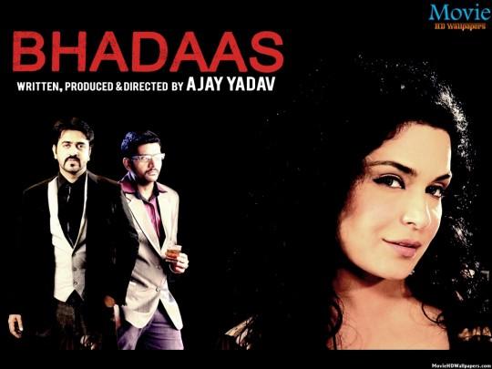 Bhadaas (2014)