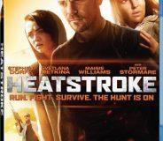 Heatstroke 2013