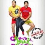 Control Bhaji Control (2014) Punjabi Movie Full HD 480p 300MB Download
