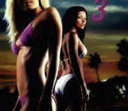 Wild Things 3 (2005)