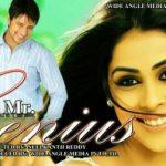 Mr. Genius (2008) Hindi Dubbed Download 300MB 480p