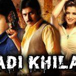 Anadi Khiladi 2015 Hindi Dubbed Movie 480p
