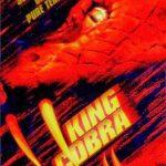 King Cobra 1999 Hindi Dual Audio 480P 300MB