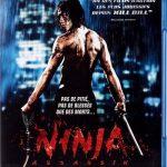 Ninja Assassin 2009 Dual Audio BluRay 720p