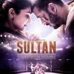 Sultan 2016 Hindi 720p BRRip 400MB HEVC